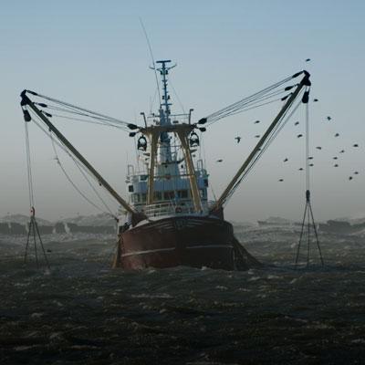 La pêche au large