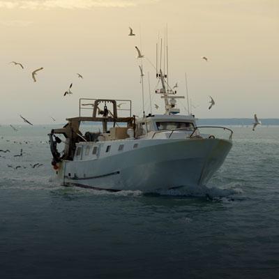 La pêche côtière
